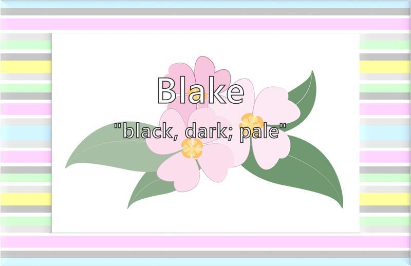 Blake - What does the girl name Blake mean? (Name Image)