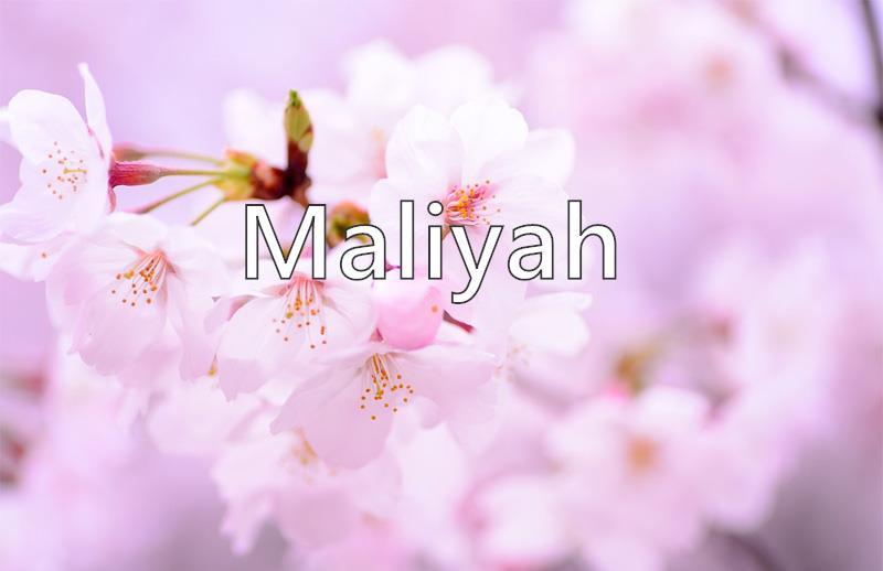 Maliyah - What does the girl name Maliyah mean? (Name Image)
